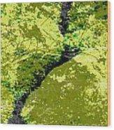Nature Study Wood Print