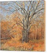 Nature's Canvas Wood Print