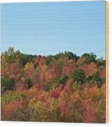 Natures Colors Wood Print