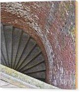 Nature's Graffiti On Circular Stair Case Wood Print