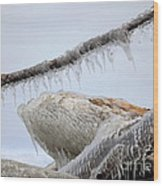 Natures Ice Sculptures 3 Wood Print