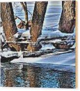 Nature's Icy Abstract No.2 Wood Print