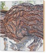 Nature's Natural Abstract Art Wood Print