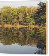 Natures Reflection Guatemala Wood Print