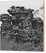 Natures' Ruins Wood Print