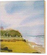 Nauset Beach Afternoon Wood Print
