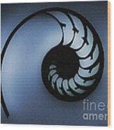 Nautilus Slice Wood Print