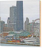 Navy Pier And Vicinity Wood Print