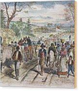 Nc: Freed Slaves, 1863 Wood Print