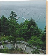 Ne Harbor Maine Seen From Thuya Gardens Mt Desert Island  Wood Print