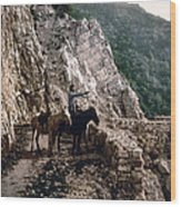 Near The Bagatski Bridge - Caucasus - Russia Wood Print