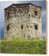 Nebojsa Tower In Belgrade Wood Print
