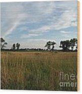Nebraska Prairie One Wood Print