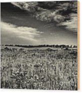 Nebraska Prairie Two In Black And White Wood Print