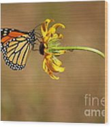 Nectar Delight Wood Print