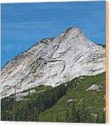 Needle Peak  Wood Print
