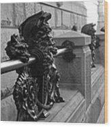 Neptune Dakota In Black And White Wood Print