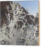 Nevada Sage Wood Print