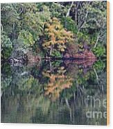 New England Fall Reflection Wood Print