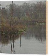 New England Swamp Wood Print