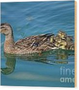 New Family Ducks Wood Print