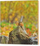 New Hampshire Chipmunk Wood Print