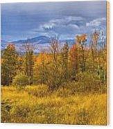 New Hampshire Fall Color Part Deux Wood Print