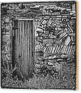 New Mexico Door IIi Wood Print