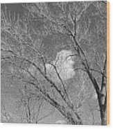 New Mexico Series - A Cloud Behind Black And White Wood Print