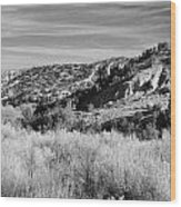New Mexico Series - A View Of The Land Wood Print