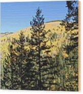 New Mexico Series - Autumn On The Mountain II Wood Print
