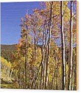 New Mexico Series - Autumn On The Mountain Wood Print
