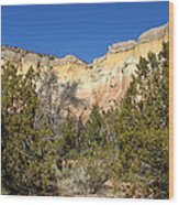 New Mexico Series - Bandelier I Wood Print