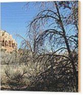New Mexico Series - Bandelier II Wood Print