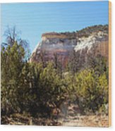 New Mexico Series - Bandelier IIi Wood Print