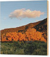 New Mexico Series - Cloud Over Autumn Wood Print