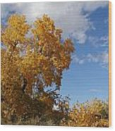 New Mexico Series - Desert Landscape Autumn Wood Print