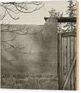 New Mexico Series - Doorway II Black And White Wood Print