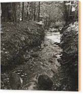 New Mexico Series - Late Winter Streambed Wood Print
