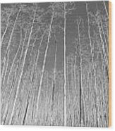 New Mexico Series - Leaf Free Black And White Wood Print