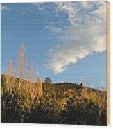 New Mexico Series - Santa Fe Landscape Autumn Wood Print