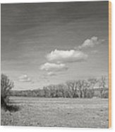 New Mexico Series - The Long View Black And White Wood Print