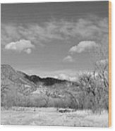 New Mexico Series - Winter Desert Beauty Black And White Wood Print