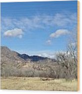New Mexico Series - Winter Desert Beauty Wood Print