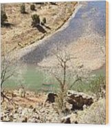 New Mexico Series A River View Wood Print