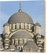 New Mosque In Istanbul Wood Print