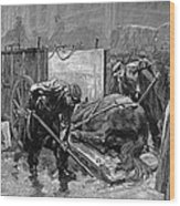 New York: Aspca, 1888 Wood Print