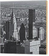 New York City Esb View II Wood Print