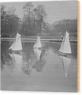 New York City, Toy Yacht Race Wood Print by Everett