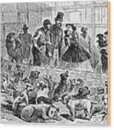 New York: Dog Pound, 1866 Wood Print